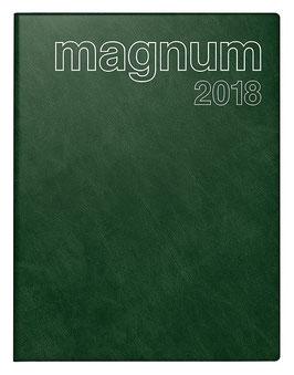 Magnum 18,3x24cm Schaumfolien-Einband Catana Dunkelgrün Modell 27042 - Rido Buchkalender 2021