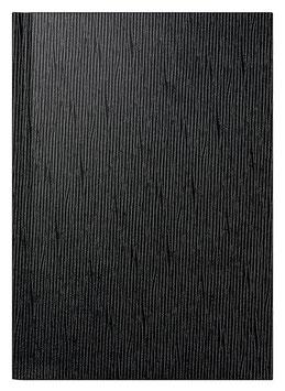 Mentor 14,5x20,6cm Kunststoff-Einband Valencia Schwarz Modell 26083 - Rido Buchkalender 2021