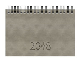 TM 17 8,7x15,3cm Kunstleder-Einband Tejo Grau Modell 12236 - Rido Taschenkalender 2020