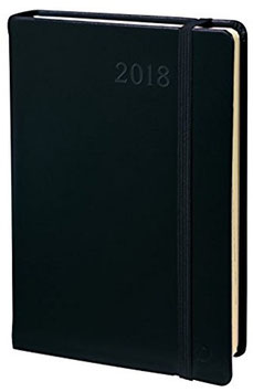 Daily Pocket 8,8x13cm Habana Schwarz - Quo Vadis Kalender 2021