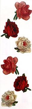 Seal *STSMROSES「Rose」