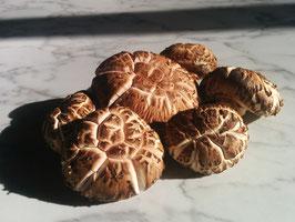 原木乾燥椎茸 (2.3kg)
