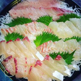 旬魚のまとめ買いセット10,000円