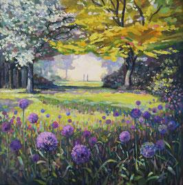 Alliums at the Arboretum
