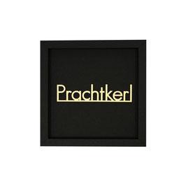 PRACHTKERL