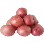Bio Erdäpfel, rotschalig