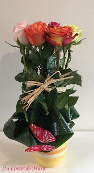 Arbre à roses
