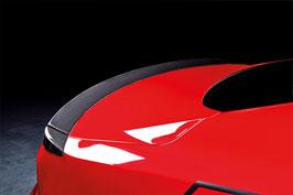 Mustang Carbon Fiber Rear Lip in three parts