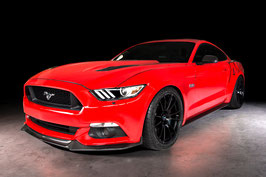 Mustang Carbon Fiber Accessories GT