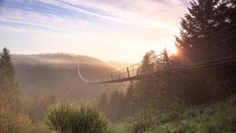 Geierlay bei Sonnenaufgang