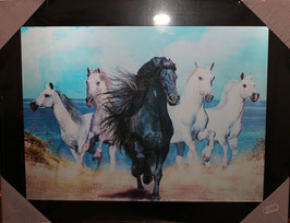 "3D Wechselbild ""Wild Horses"""