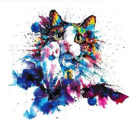 Katze mit Pfote