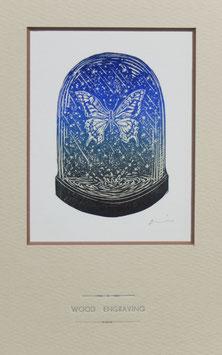商品名 木口木版画「アゲハチョウ」カラーバージョン