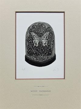 商品名木口木版画「アゲハチョウ」黒インクバージョン