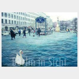 "Postkarte ""Schwanensee Berlin-Neukölln"""