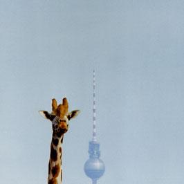 """Foto auf Acrylglas """"Berlin in Sicht"""""""