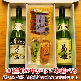 10種類から2本選べる 日本酒おつまみコラボセット