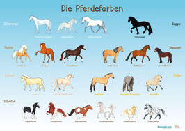 """Lehrposter """" Die Pferdefarben"""""""
