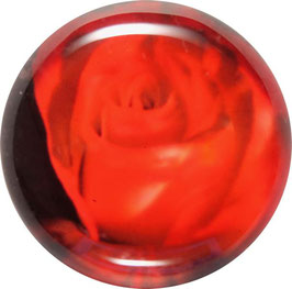 Glasmagnet Kühlschrankmagnet Rose