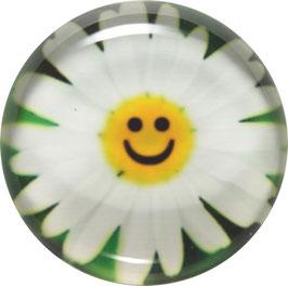 Glasmagnet Kühlschrankmagnet Smiley Margerite