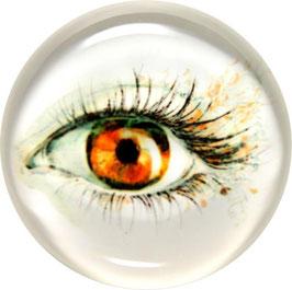 Glasmagnet Kühlschrankmagnet Auge braun