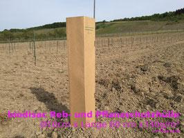 Pflanz- und Rebschutzhülle biodisac Ø 10cm x330g/m²