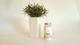 Green Tree zeezout aroma Eucalyptus mint