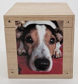 """9Erinnerungs-Box """"Branka"""""""