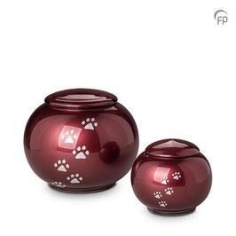 FU110-Glas Urne Pfötchen Flach