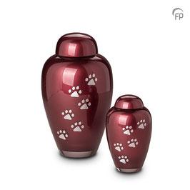 FU112-Glas Urne Pfötchen Hoch