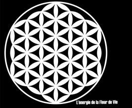 Tee-shirt - FLEUR de VIE