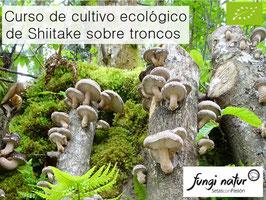 CURSO VÍDEO-TUTORIAL DE CULTIVO ECOLÓGICO DE SHIITAKE SOBRE TRONCOS