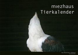 miezhaus Tierkalender endlos / Limitierte Auflage