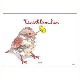 Trostblümchen - Kleiner Vogel