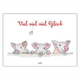 Viel, viel, viel Glück - Kleine Schweine