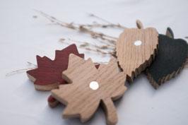 4 x Blätter Magnete / Eiche