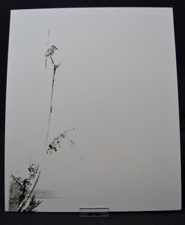 Miyamoto Musashi- 枯木鳴鵙図 Koboku Meikakuzu -Shrike on a Dead Tree