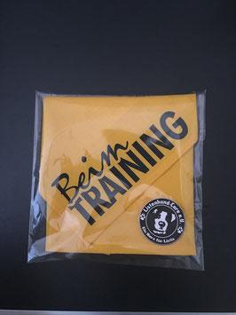 Hundehalstuch Beim Training