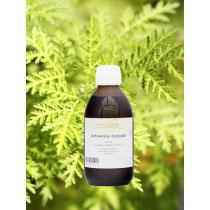 Artemisia Extrakt
