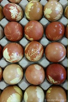 Ostereier frisch gefärbt 3