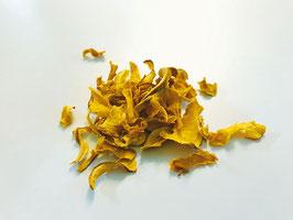 Hokkaido Kürbis Chips 10g