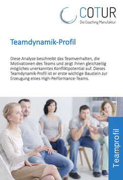 Teamdynamik-Profil