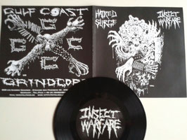 Insect Warfare/Hatred Surge - 7""