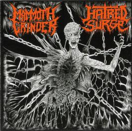 HATRED SURGE / MAMMOUTH GRINDER                                   SPL CD