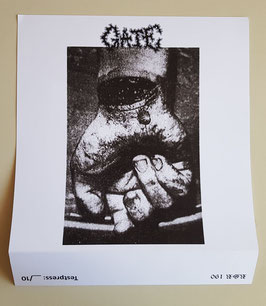 GATE                        TESTPRESS                                          LP