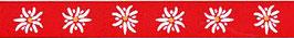 Folklore Schweiz Edelweiss