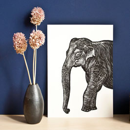 "Poster ""Elefant"""