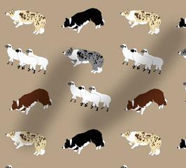 Border Collie Hunde Stoff mit Schafen, Baumwoll-Jersey, viele Farben