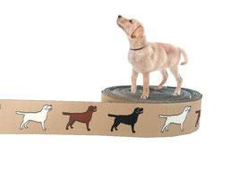 1m Labrador Webband Borte Hund, 25mm breit, beige