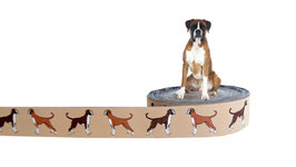 1m Boxer Webband Borte Hund, 25mm breit, beige
